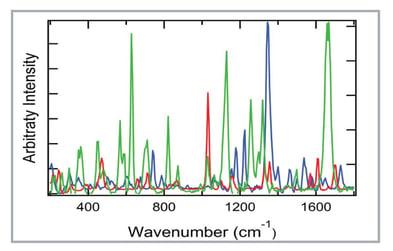 1064 nm excitation Raman spectra of ascorbic acid, chromium picloninate, and vitamin B2